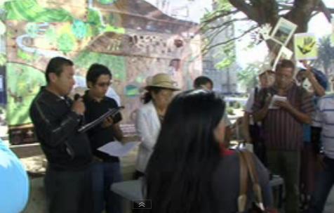 Foto: Colectivo Oaxaqueño
