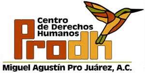 Logo Miguel Agustin Pro