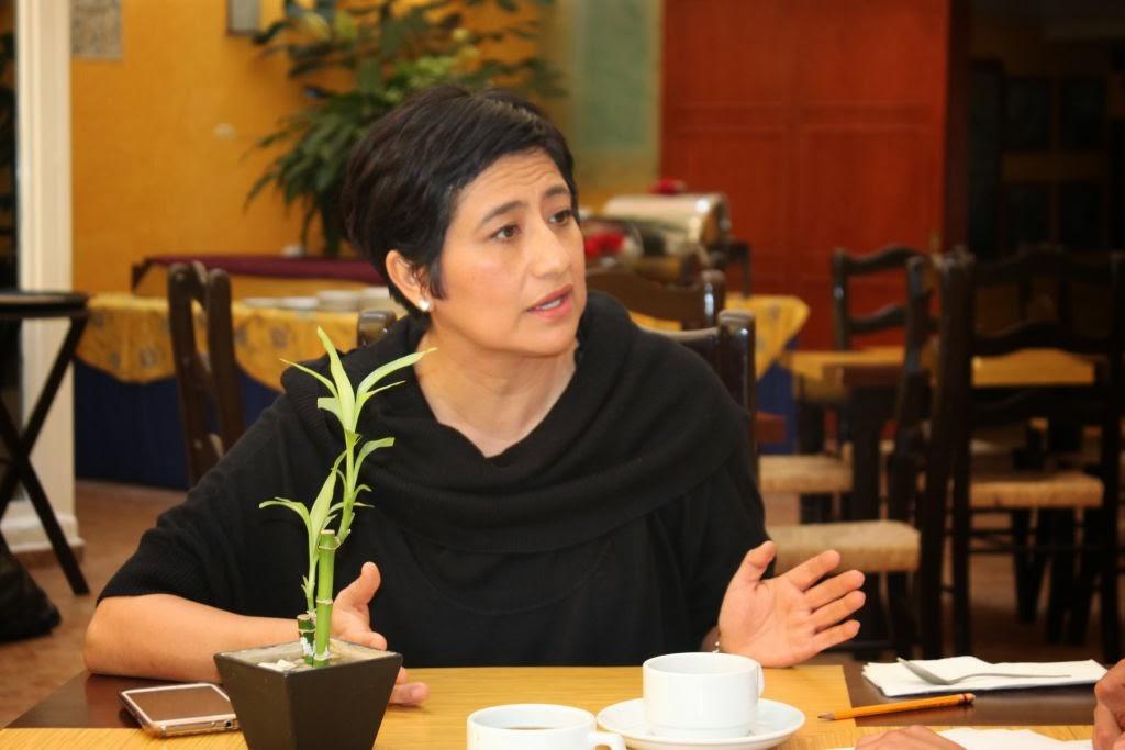 Rosy Laura Castellanos Mariano, candidata a la Presidencia de la CDHDF, quien actualmente dirige el Instituto de Investigación y Estudios en Cultura de Derechos Humanos A.C. y con amplia trayectoria en trabajo de campo en la solución de problemas de derechos humanos Foto: Difunet