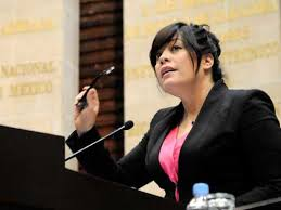 Lilia Aguilar Gil Foto: PT diputados